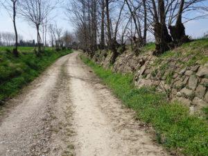 Strada bianca con muro a secco