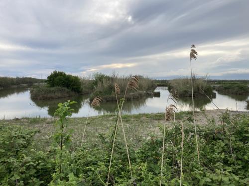 Valle Pantani