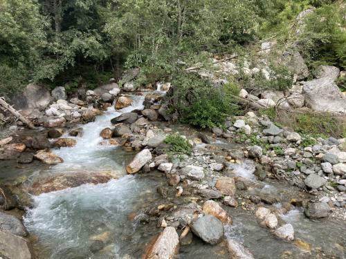 Il fiume Degano